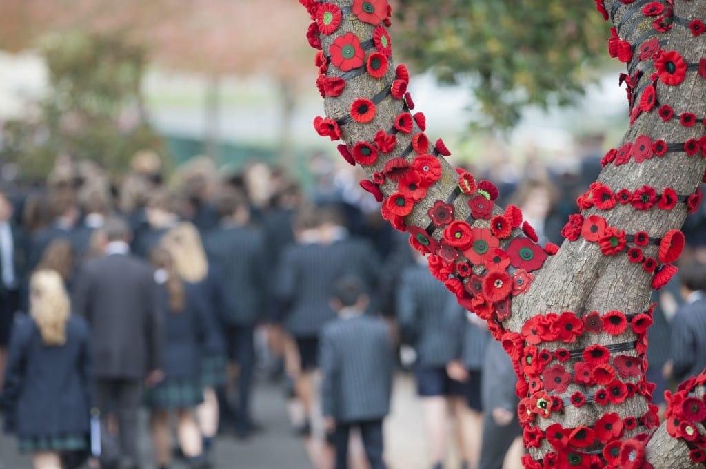St Leonard's commemorates ANZAC centenary with 1200 poppies